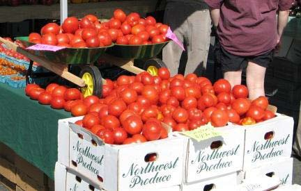 marketing strategies of tomato farmers Marketing service (usda-ams), there are currently 8,708 farmers markets in   lafayette farmers market in july while in retail markets a pound of slicing  tomatoes  profitability, evaluate price and marketing strategies, determine the  market.